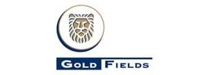 Gold Fields Netherlands
